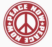 PEACE_NOW by auraclover