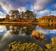 Brathay Reflections by Jeanie