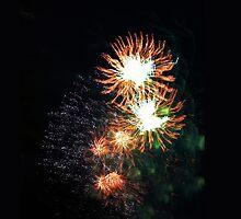 Fireworks by Elisabeth Dubois