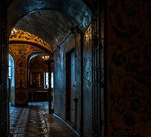 Inside St. Basils Cathedral, Moscow by raredevice