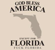 God Bless America Except For Florida by crazytees