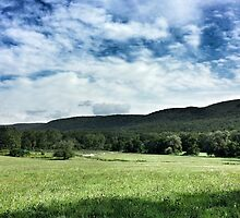Along the Berkshires by Colleen Drew