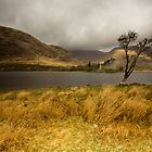 Kilchurn Castle by cieniu1
