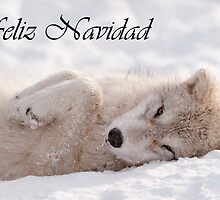 Arctic Wolf Christmas Card Spaniah 6 by WolvesOnly