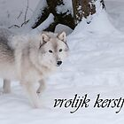 Timber Wolf Christmas Card Dutch 1 by WolvesOnly