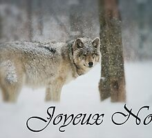 Timber Wolf Christmas Card French 5 by WolvesOnly