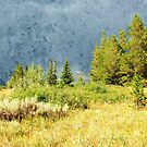 Oil painting style landscape photography. Mountain hill under storming sky at Grand Teton National Park. by naturematters