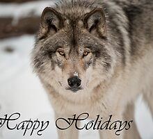 Timber Wolf Holiday Card 8 by WolvesOnly