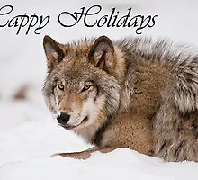 Timber Wolf Holiday Card 11 by WolvesOnly