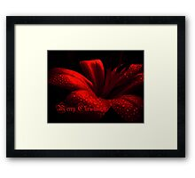 Merry Christmas!!! Framed Print