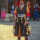 Deoksu Palace Guard by TonyCrehan