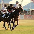 Polo in the park by Denzil