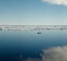 Ross Sea Antarctica by Carole-Anne