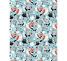 Pattern of the fun owls Photographic Print