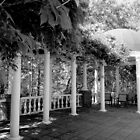 Garden Patio - B&W by ctheworld