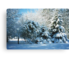 Winter Wonderland-Snow Canvas Print