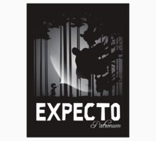Expecto the Sticker by moysche