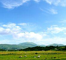 Highlands Scotland by sebmcnulty