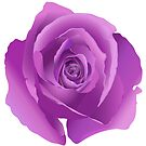 Lavender Rose by TinaGraphics