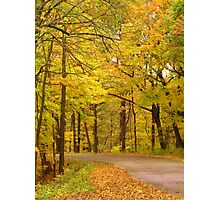 Autumn Drive in the Park Photographic Print