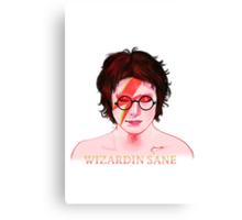 Wizardin Sane Canvas Print
