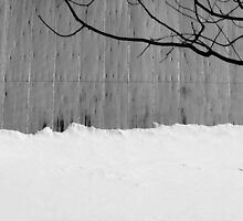 Barn Roof, Snow, Tree by marybedy