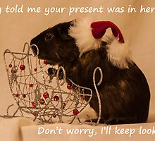 I'll keep looking - your presents here somewhere. by Deborah McGrath