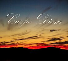 carpe diem by pipersdream