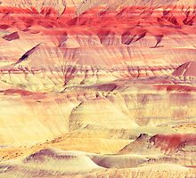 Painted Desert Abstract by Roupen  Baker