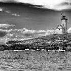 Two Bush Island Light, Maine by fauselr