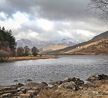 Snowdonia Lake by Janet Jenkins