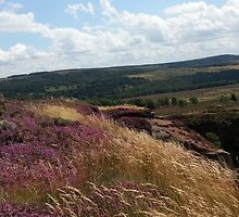 Hathersage by CarlDeaves