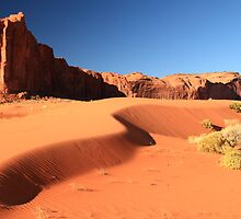 Sand Dune and Sage Brush, Monument Valley by Roupen  Baker