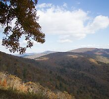 Blue Ridge Skyline Drive No.12 by Allison Patel