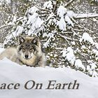 Peace on Earth by Poete100