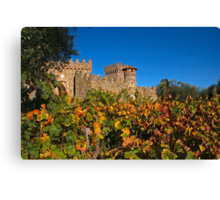 Fall at the Winery Canvas Print