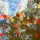 Leaves in Flowing Water by John Butler