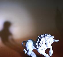 unicorn with lonely shadow. by AnjiMarth
