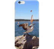 Pelican feeding iPhone Case/Skin