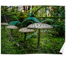 Follow Me Little Ones ~ Wild Mushrooms ~ Poster