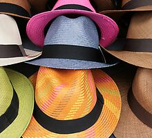 Colored Panama Hats by rhamm
