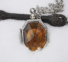 Elder Wand & Slytherin's Locket by May92
