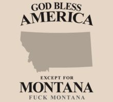 God Bless America Except For Montana by crazytees