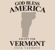 God Bless America Except For Vermont by crazytees