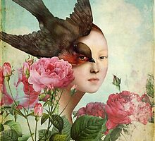 The Silent Garden by ChristianSchloe