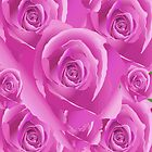Pink Roses by TinaGraphics