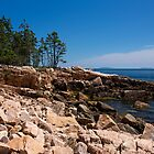 Ship Harbor - Acadia National Park, ME 07-13-13 by David Lipsy