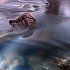 Bells rapids sunset v3 by BeninFreo