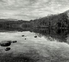 Still Waters by EvilTwin