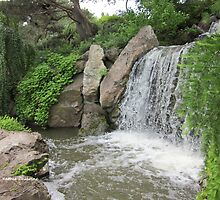 Waterfall Garden by Kathie  Chicoine